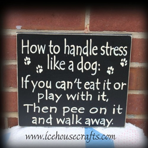 How to handle stress like a dog: if you can't eat it or play with it, then pee on it and walk away