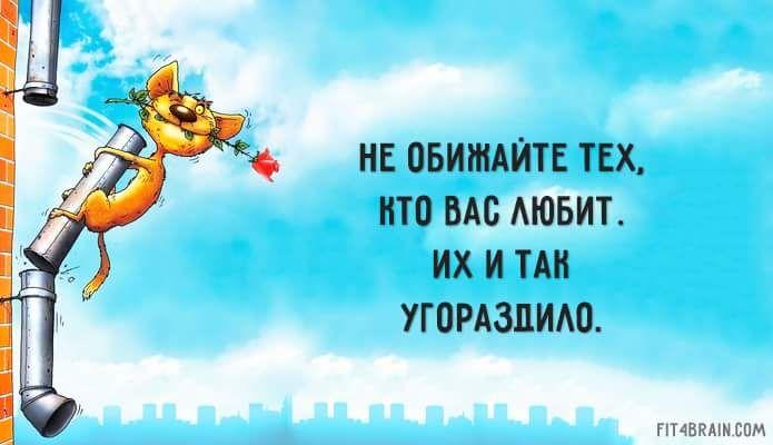 14956000_1262820213778584_6452707437889918521_n.png.jpg (695×400)