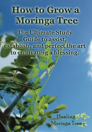 Moringa oleifera, the tree of life, has earned a growing reputation for its miraculous nutritional and medicinal properties. Description from healingmoringatree.com. I searched for this on bing.com/images