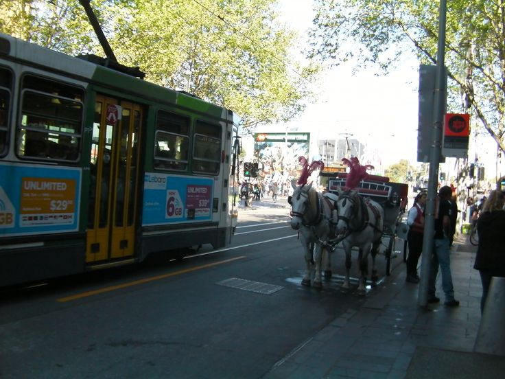 Melbourne city trams a cool way to commute in city limits. http://www.ozehols.com.au/blog/victoria/explore-melbourne-city-visit-st-kilda-beach/ #melbourne #stkilda #visitmelbourne