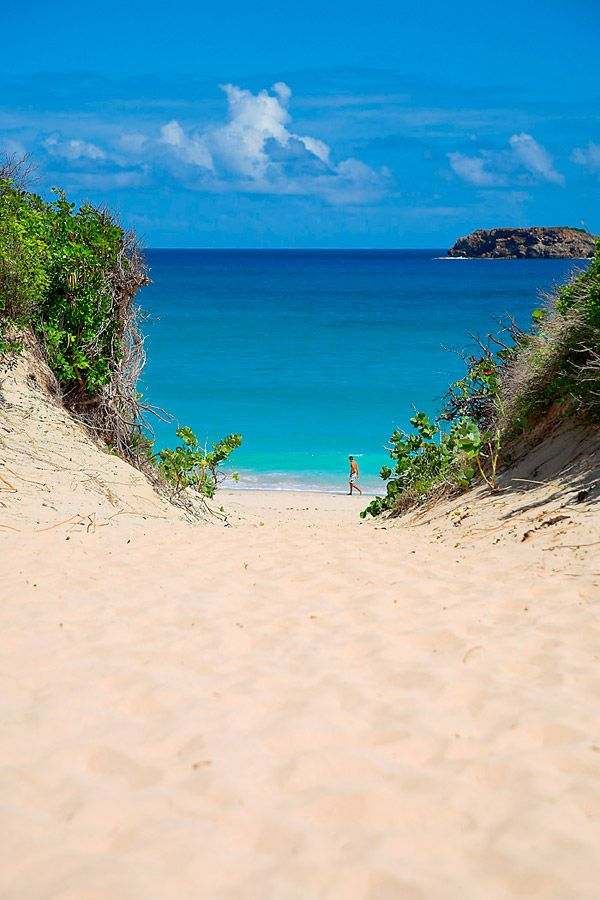 58 Best Images About St Barth Island On Pinterest Islands Dive In And St Barths