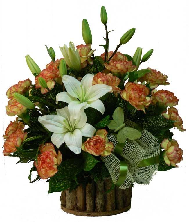 Friendly    Lindo arreglo floral de Lirios y Claveles sobre una base rustica y una delicada mariposa como detalle. Disponible en diversos colores según existencias.