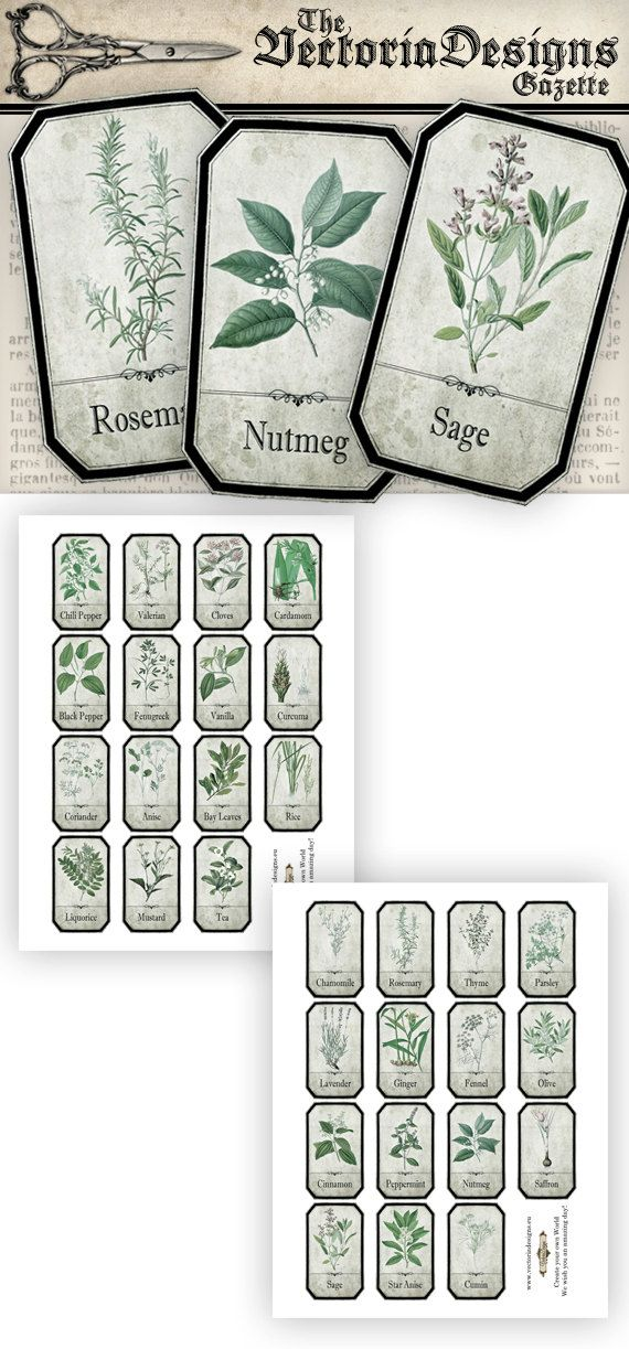 Shabby Herbal Apothecary Labels - a collection of 30 different herbal bottle and jar labels for your kitchen. What you actually want to know: ° 30 high quality (300 dpi) labels on two 8.5 x 11 sheets for easy printing ° each label is 2.5 x 1.5 inch - 6.3 x 3.8 cm ° watermark will be removed ° JPG and PDF  Same labels in other color: www.etsy.com/listing/174286428/spice-labels-jar-labels-tags-instant ________________________  Save money, use these discount coupon codes: ° buy more than €9…