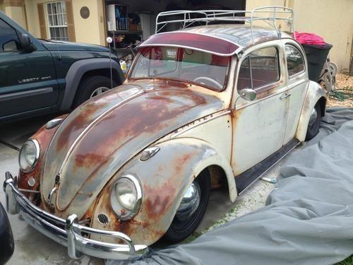1000 Images About Slammed Beetles On Pinterest