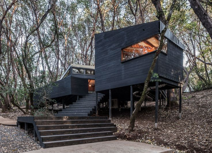 Forest House,in Northern California By Envelope A + D
