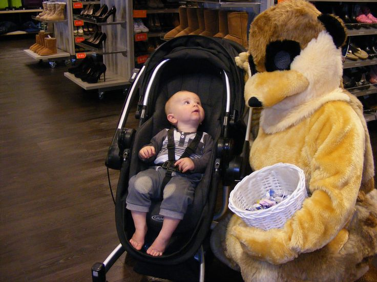 Please Mummy can we buy him - is he in the Sale