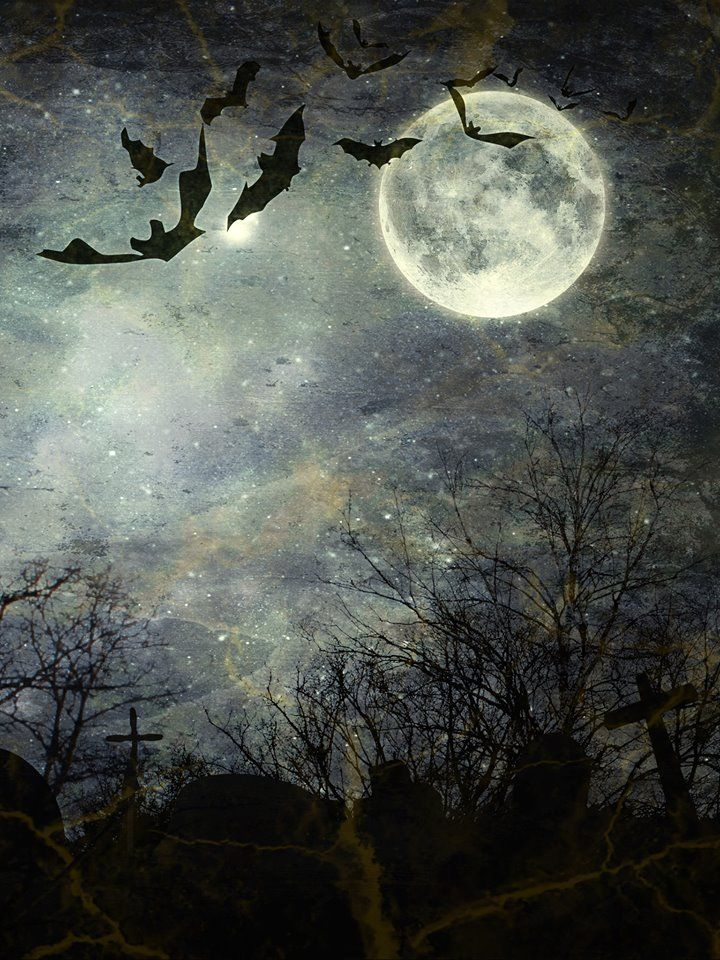 Dracula's Moon Halloween Backdrop