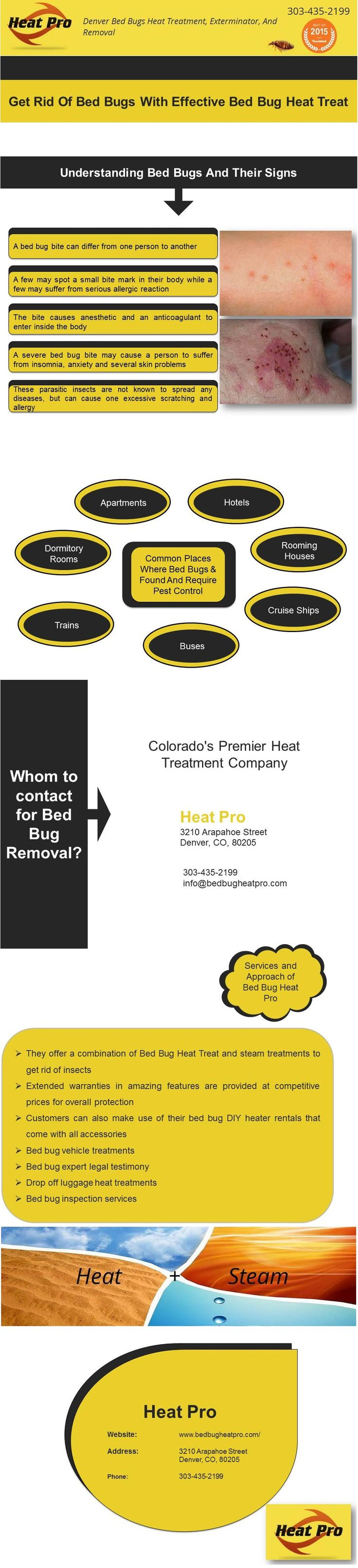 Pin by Ivan Stankov on Pest Control Community Bed bugs
