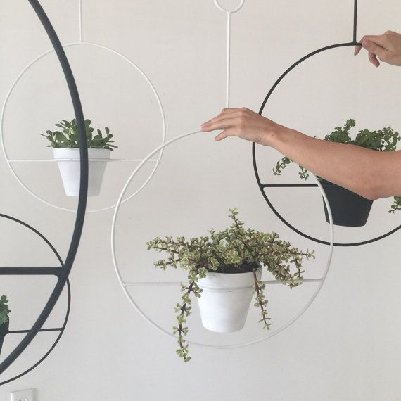 A new twist on the classic mid-century plant holder. These plant hangers come in two sizes:  Large - Hoop is 18 in diameter and fits a 6 pot.