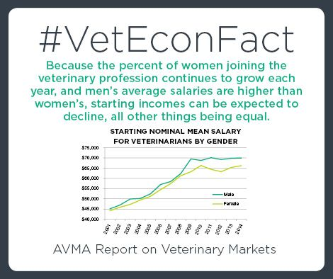 See how your salary compares with those of other veterinarians. Try the AVMA's Veterinary Salary Calculator: https://www.avma.org/ProfessionalDevelopment/Pages/default.aspx?utm_source=pinterest&utm_medium=socmed&utm_campaign=econfact