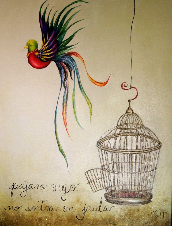 Pájaro viejo... No entra en jaula... By Pau arte mexicano