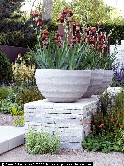 Iris in pots. A contemporary garden with a corten steel screen and low wall with stone urns interspersed with mediteranean style plantingDSRD30916