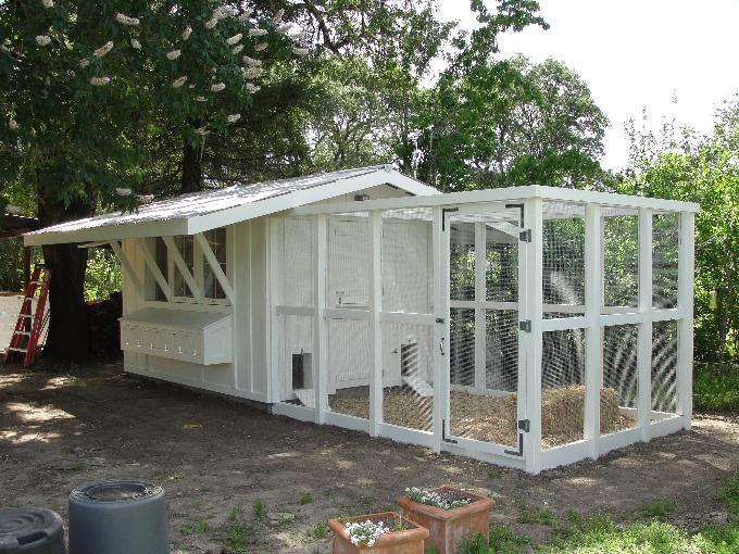 simple white chicken coop/run