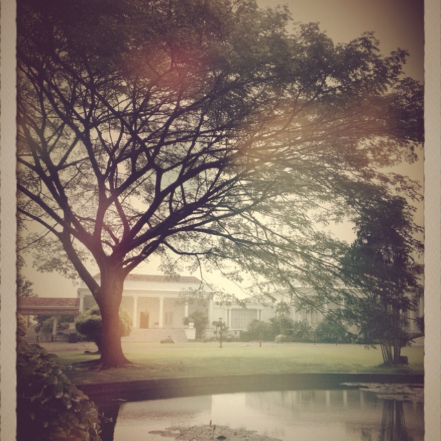 The White House in Bogor Botanical Garden. Indonesia