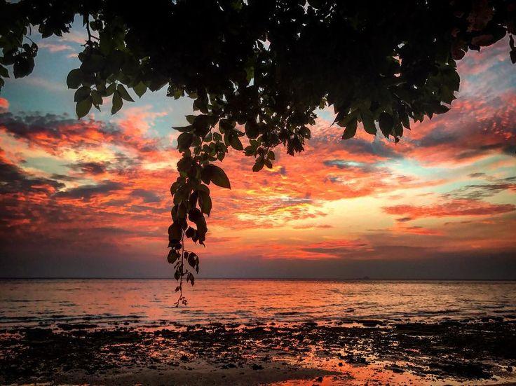 Los atardeceres no se explican ni con fotos ni con palabras. Los atardeceres se disfrutan en directo y nunca es un mal día para beber una cerveza descalzo mientras ves cómo muere el sol y da a luz a una nueva luna  - #mochileros #blogger #viaje #viajar #travelblogger #travel #traveling #isla #island #tioman #paraiso #paradise #sunset #atardecer #beach #playa #color #colour #landscape #wanderlust #backpacking #malasia #malaysia #amazing #holidays #vacaciones #peace