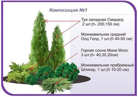 Готовые ландшафтные композиции | Студия Высота»