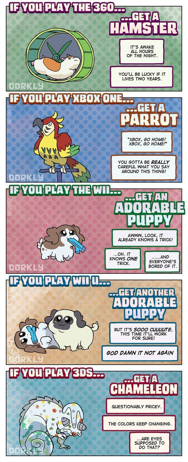 Dorkly Comic: The Perfect Pet For Every Gamer >> I get a chameleon and two adorable puppies
