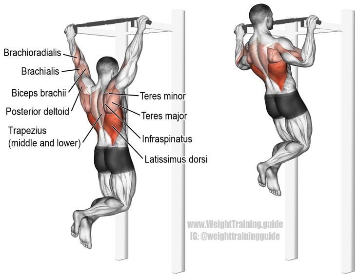 38 best images about back exercises on pinterest