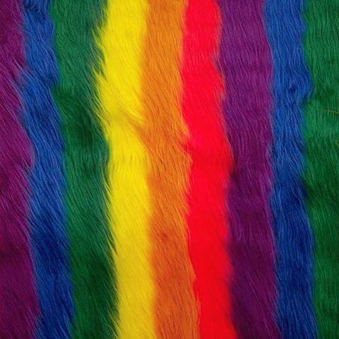 M s de 25 ideas incre bles sobre fondos llamativos en - Colores llamativos ...