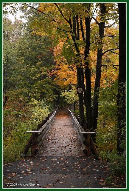 Parc de la Gatineau, Sentier du bureau d'accueil des visiteurs à Chelsea, Qc  ___________  Path from the Gatineau Park Visitors' Centre in Chelsea, Quebec