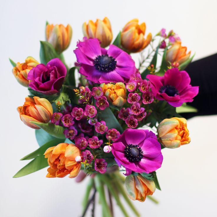 Färgexplosion med dubbla orangea tulpaner, lila anemoner och lila vaxblomma