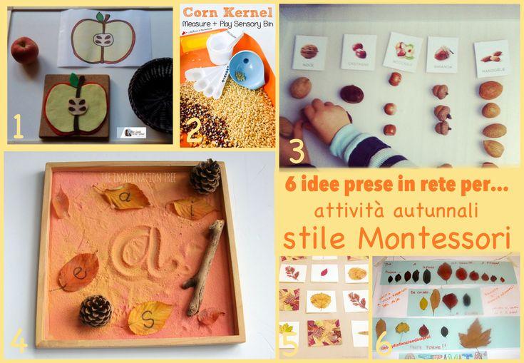 6 idee prese in rete per... attività autunnali stile Montessori