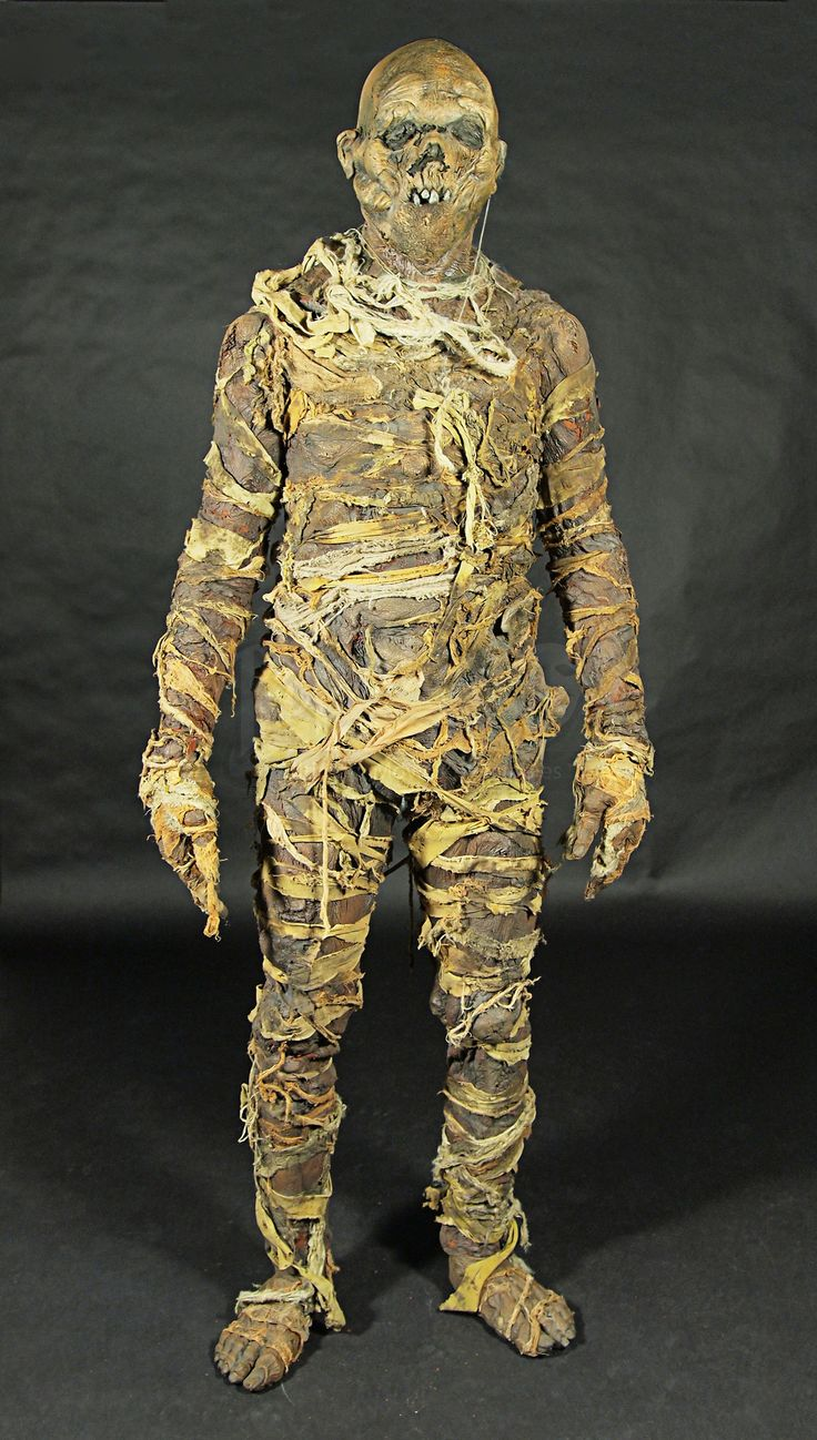 full body decaying mummy costume full costume and make