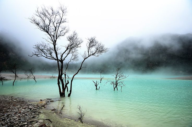 Kawah Putih (White Crater) is a striking crater lake and tourist spot in a volcanic crater about 50 km south of Bandung in West Java in Indonesia... http://exploretraveler.com