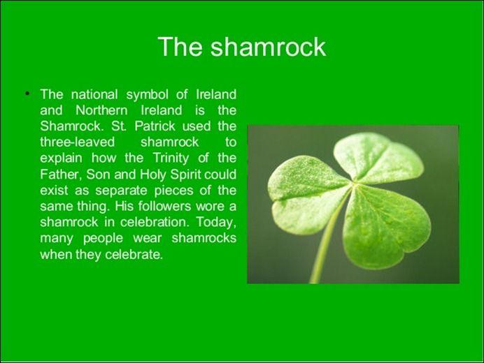 Saint-Patrick-Day-Shamrock-Three-Leaves