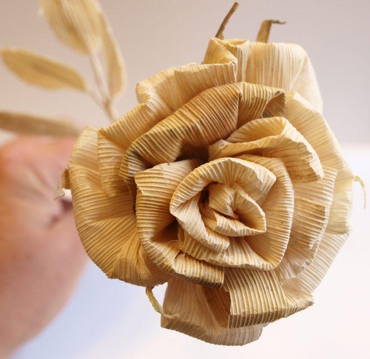 šustí růže