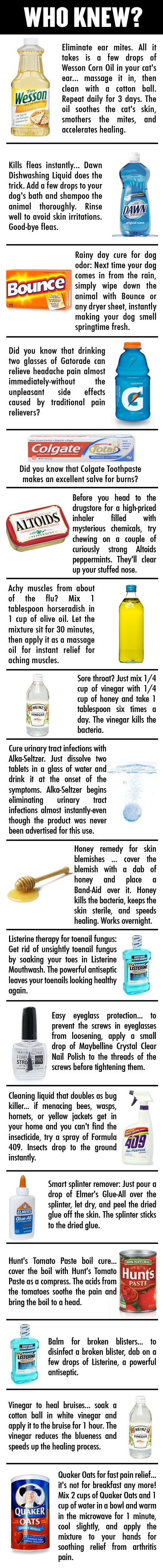 Burns: Colgate Toothpaste // Splinter remover: Elmer's Glue // Bruises: Vinegar // Blemishes: Honey