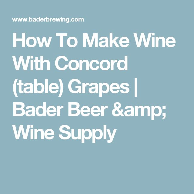 How To Make Wine With Concord (table) Grapes | Bader Beer & Wine Supply
