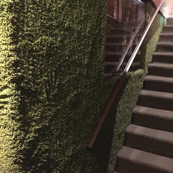Green Rug White Walls: Shag Carpet, Ceiling Og