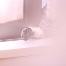 slumer by Nobuta49 in  Photography