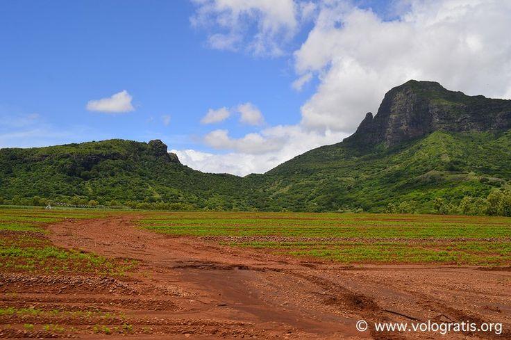 #Mauritius #travels #nature #viaggi #viaggiare