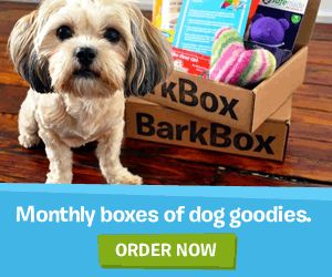 Win a 6-Week PetSmart Dog Training Class or Training Tools Prize Pack! | Woof Woof Mama