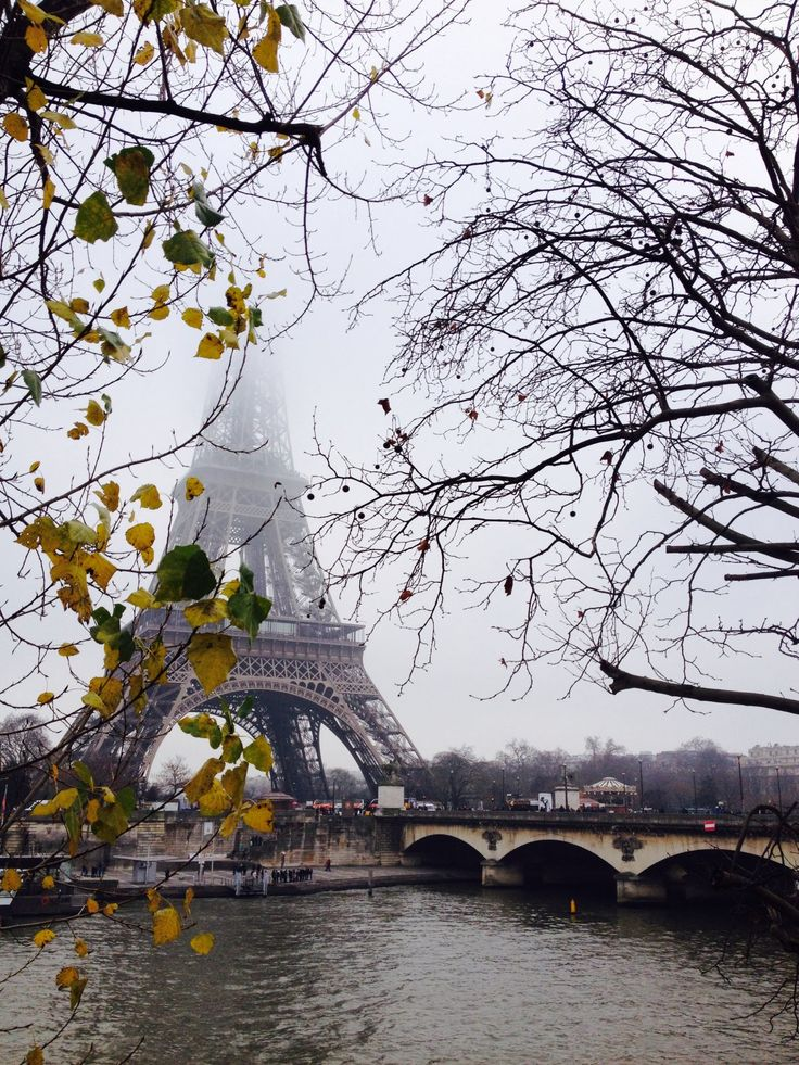 Париж. Декабрь 2014.