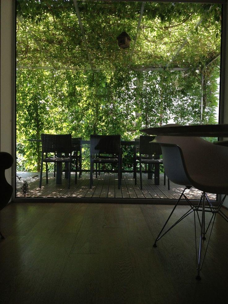 Un giardino a Padova. : Giardino minimalista di ESTERNIDAUTORE