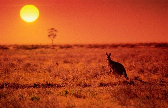 Australian Outback