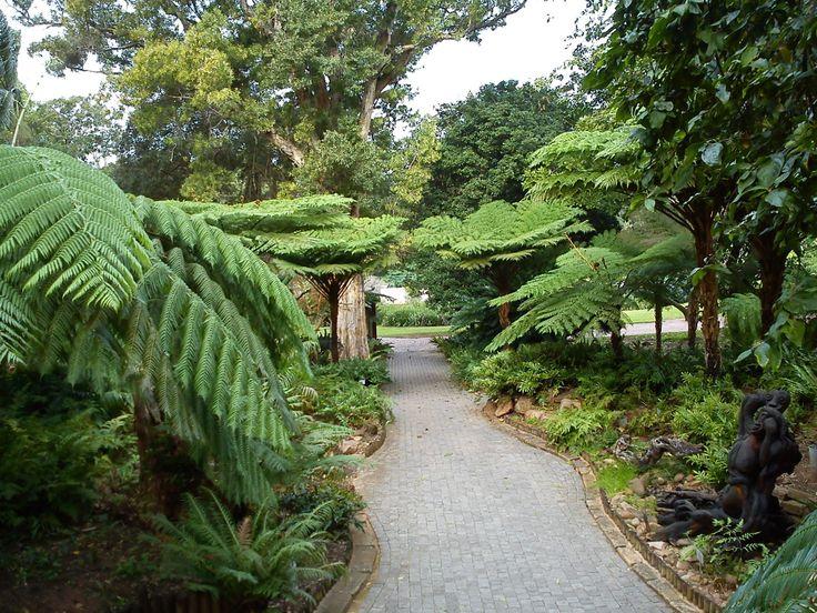 Durban Botanical Garden ...
