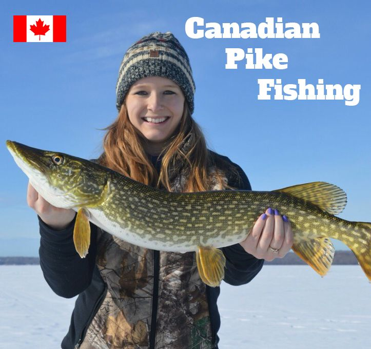 912 best Fishing Tips images on Pinterest