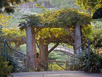 17 Best Images About Zthe Huntington Library On Pinterest Gardens Edward Hopper And Los