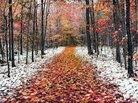 $$$ Заработок в Интернет $$$: Kramatorsk First snow 2 NOVEMBER 2016