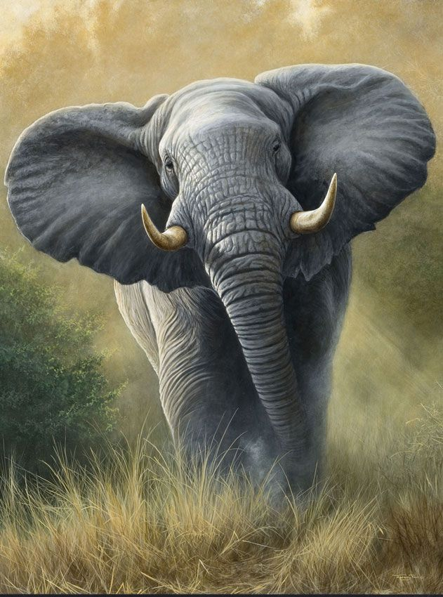 !!! <3 Absolutely STUNNINGLY BEAUTIFUL! This artist is amazing. This looks so real that it could be a photograph. I love, Love, LOVE Elephants. <3 !!!