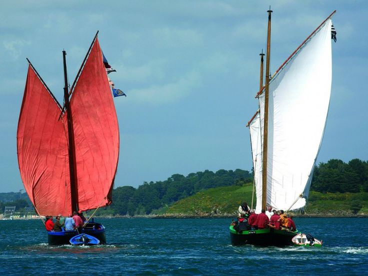 Sinagos vent-arrière dans le golfe du Morbihan