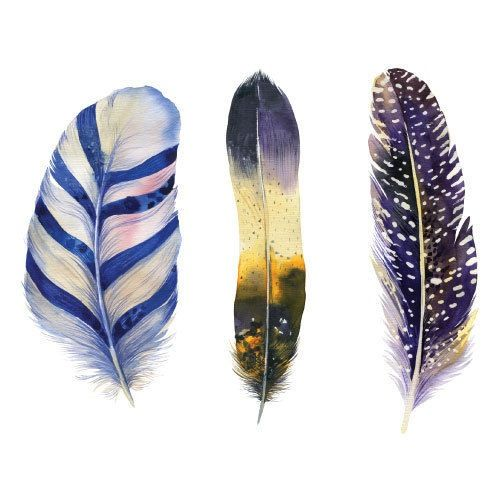 Image of Missy Joelle Feather Dark watercolour