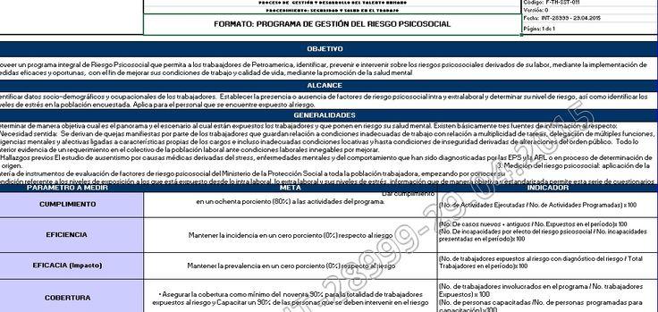 SGSST | Matriz Gestión del Riesgo Psicosocial -Ejemplo