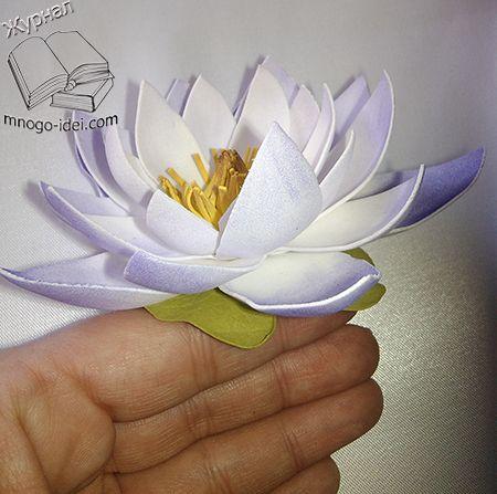 сегодня мы с вами рассмотрим интересный и простой мастер класс по изготовлению лотоса из фоамирана. Вот такой чудный цветок лотоса