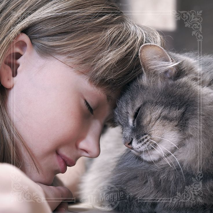 """""""What greater gift than the love of a cat."""" - Charles Dickens #catlove #cats"""