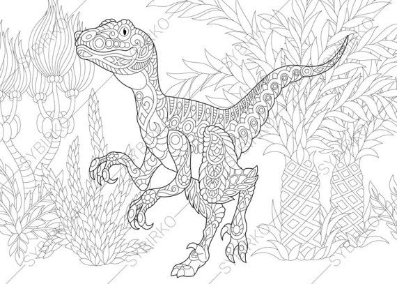 Dinosaur Velociraptor Adult Coloring Book By ColoringPageExpress